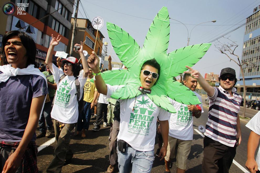 Марш марихуана купить семена конопляные спб