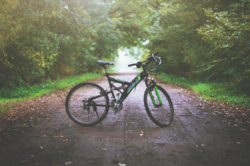Велосипеды в электричках поедут на открытие сезона бесплатно
