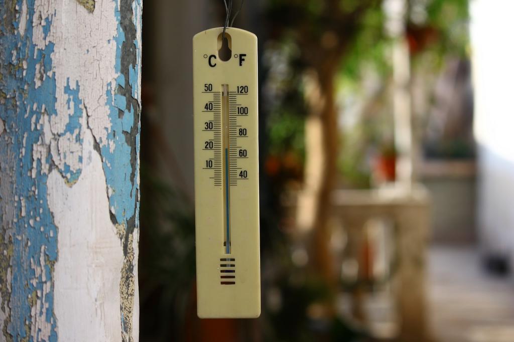 Жара до +27 градусов и дожди придут в Ленобласти в пятницу