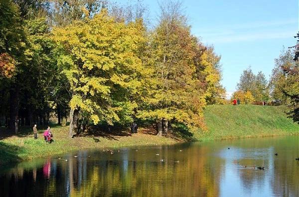 В Кингисеппе очистят пруд с помощью современных технологий