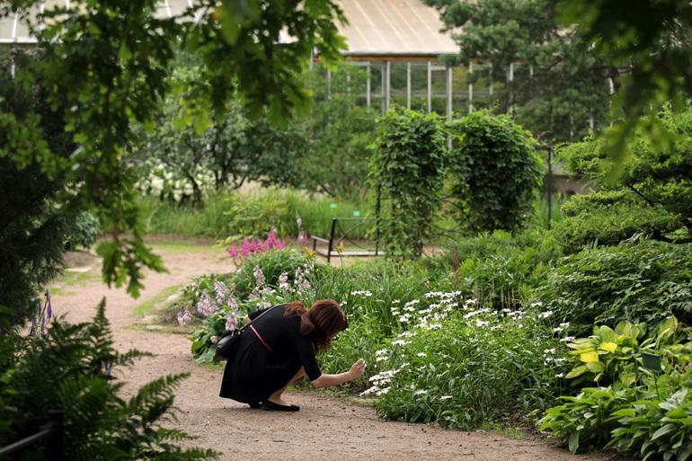 Ботанический сад временно закроет оранжереи из-за жары