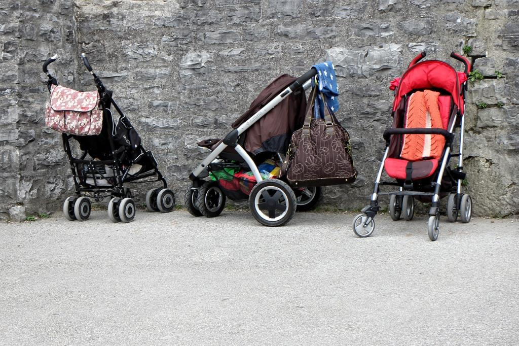 В Купчино из-за ветра детская коляска оказалась в озере