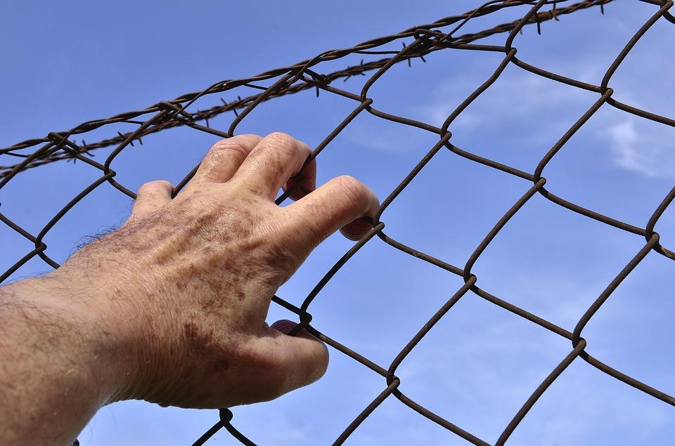 Двое финнов получили пять лет тюрьмы за нападение на таможенника