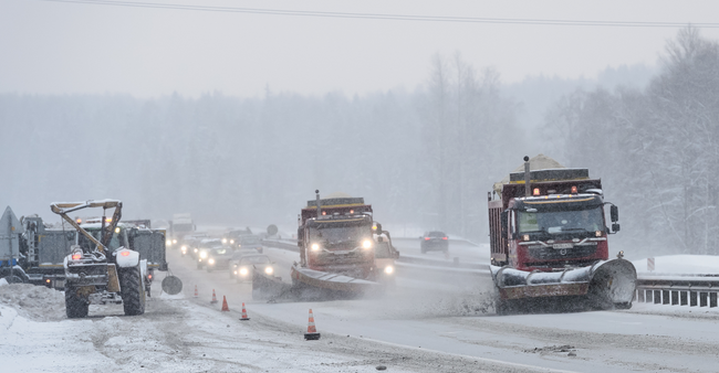 МЧС предупреждает жителей Ленобласти о тумане и гололедице на дорогах с 24 по 26 января