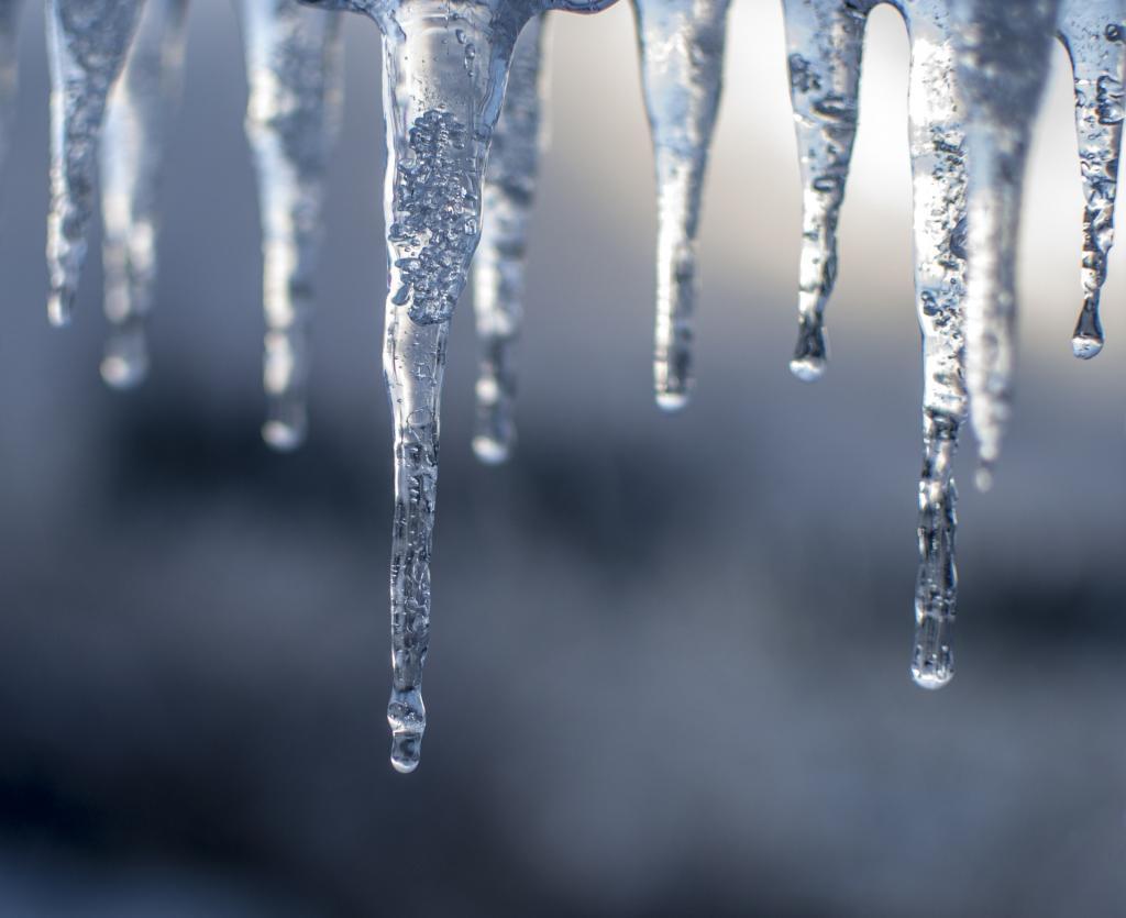 Синоптики обещают мокрый снег и дождь в Ленобласти 22 января