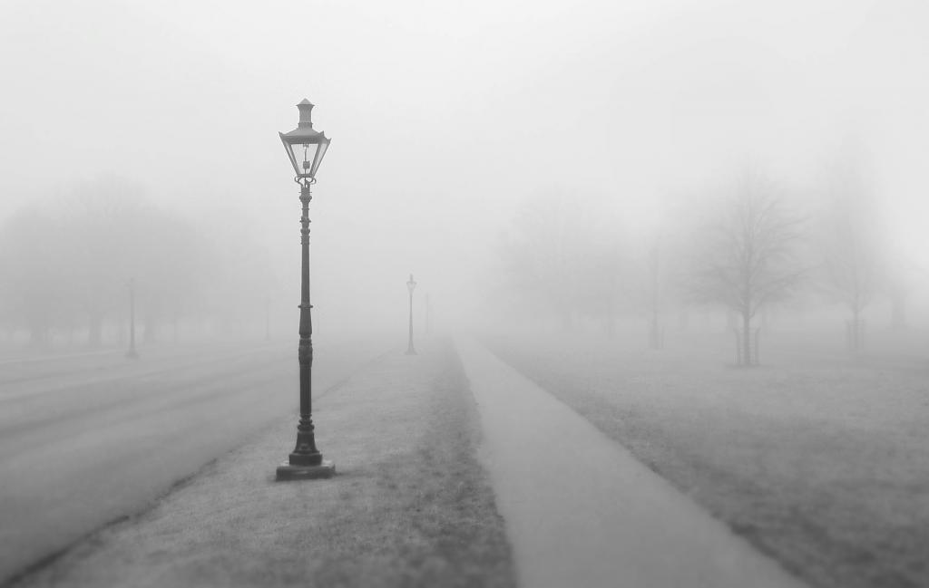 МЧС предупредило о густом тумане в Ленобласти 5 мая
