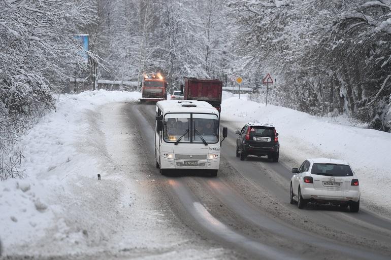 Ветер завалил 50 деревьев на подъезде к Славково