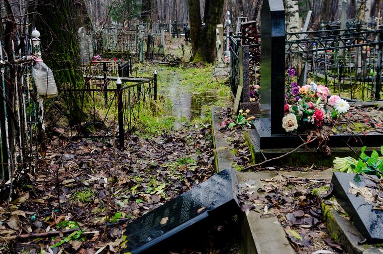 Начальник ритуальной компании подрался с конкурентом на кладбище в Ириновке