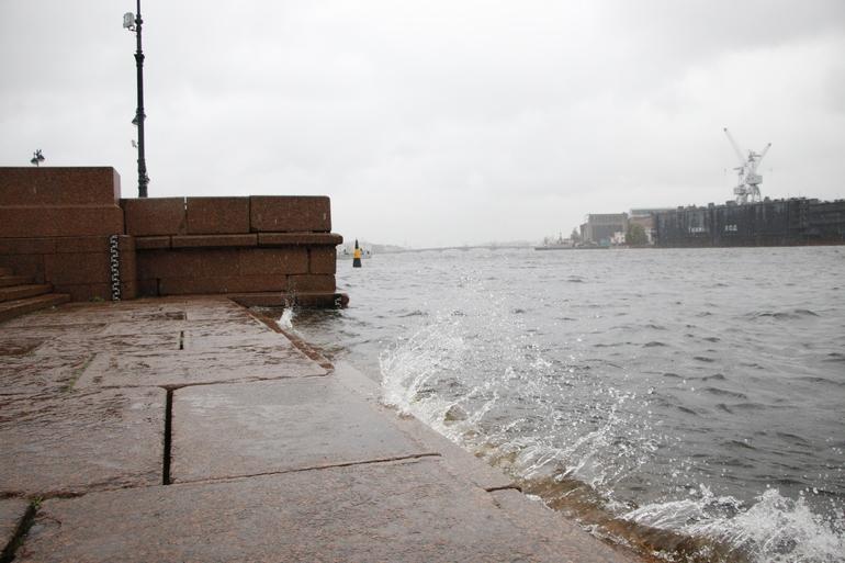 В МЧС предупредили петербуржцев о сильном ветре во вторник