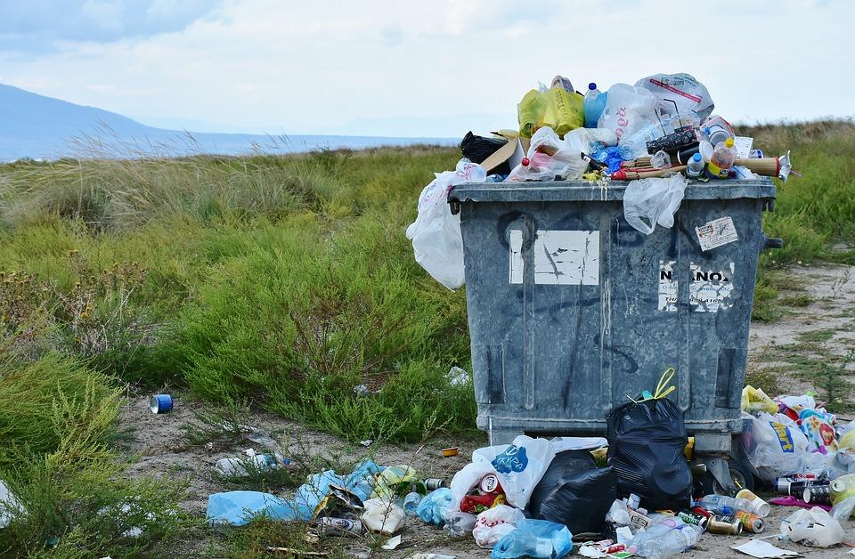 В 2019 году в Ленобласти оборудовали 800 контейнерных мусорных площадок