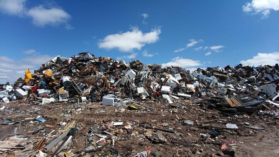 В Ленобласти свалка нанесла ущерб природе на 140 млн рублей