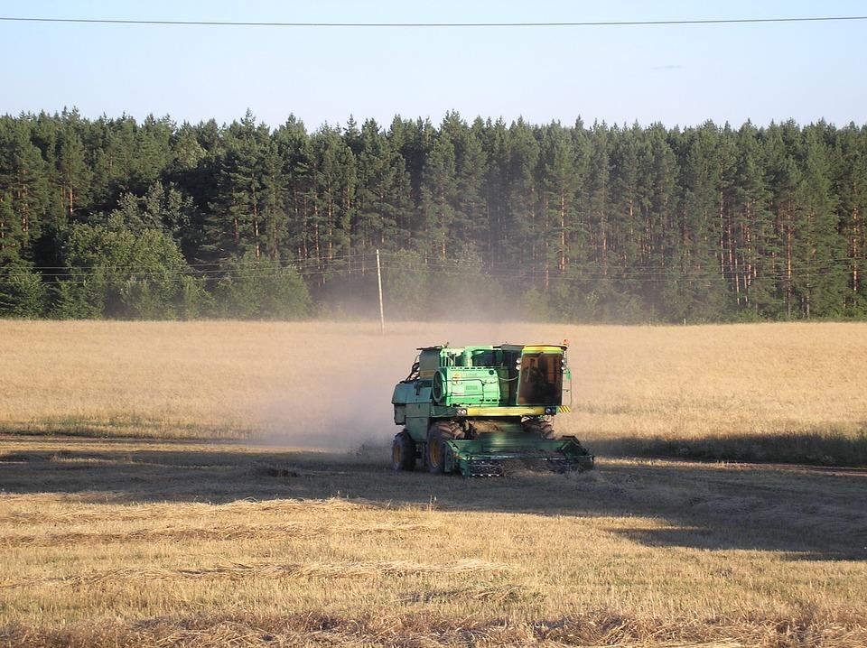 Россия приостановит экспорт зерновых культур до 1 июля