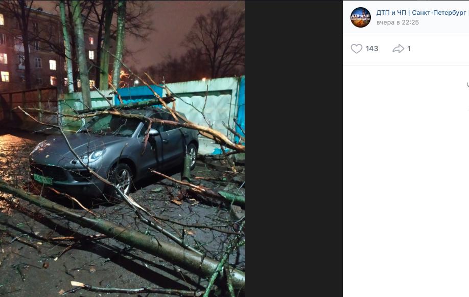 Пользователи Сети рассказывают о последствиях шторма в Петербурге