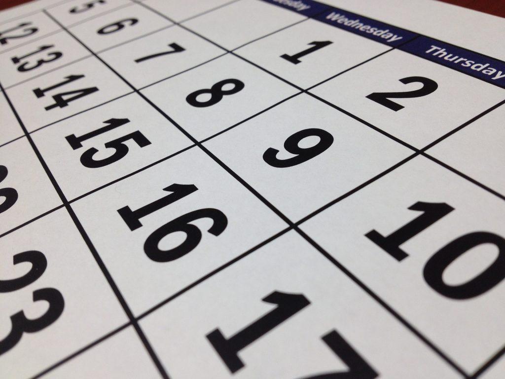 Экскурсии, концерты, консультации: главные события Петербурга на предстоящую неделю