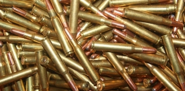 Лес Ленобласти полон неожиданностей: найден мешок с ружьем и патронами
