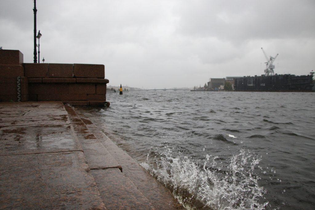 Неделя в Петербурге начнется с дождей и сильного ветра