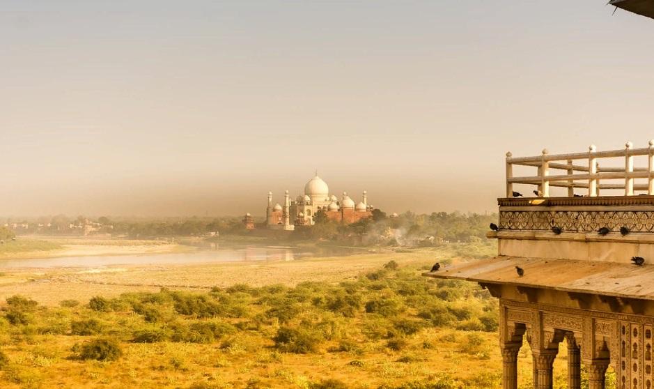 В Индии на фоне COVID-19 участились случаи заражения грибковой инфекцией