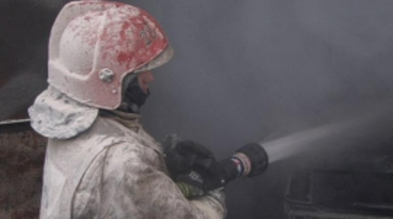 В Стрельне спасатели тушили полыхающую Kia