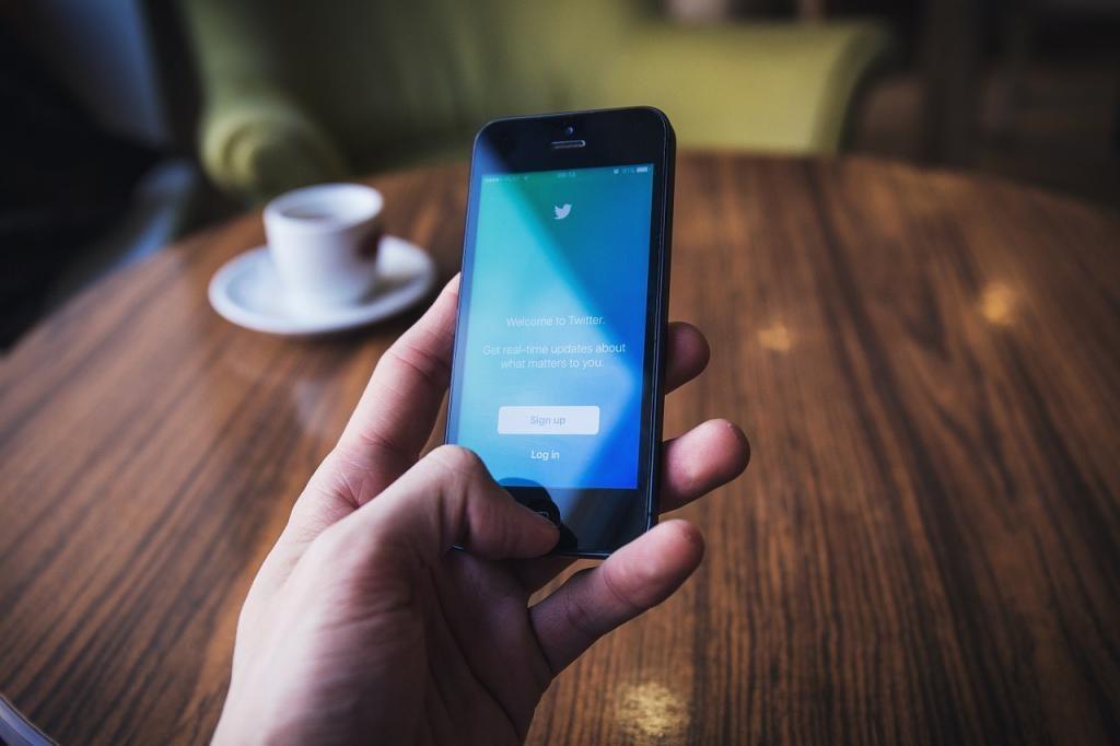 Антирейтинг Общественной палаты по вредному контенту возглавил Twitter