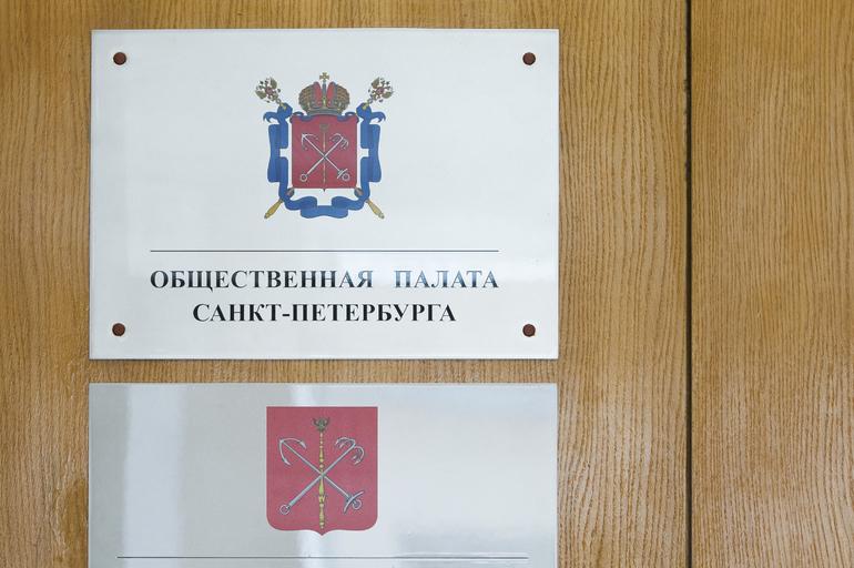 Общественная палата Петербурга оценила проведения голосования по поправкам к Конституции