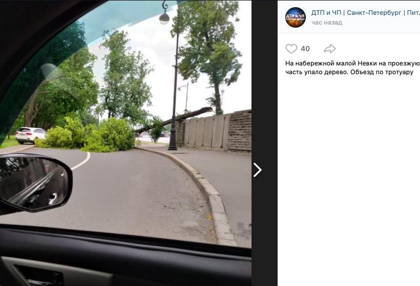 Жители Петербурга рассказывают о последствиях штормового ветра и ливня в городе