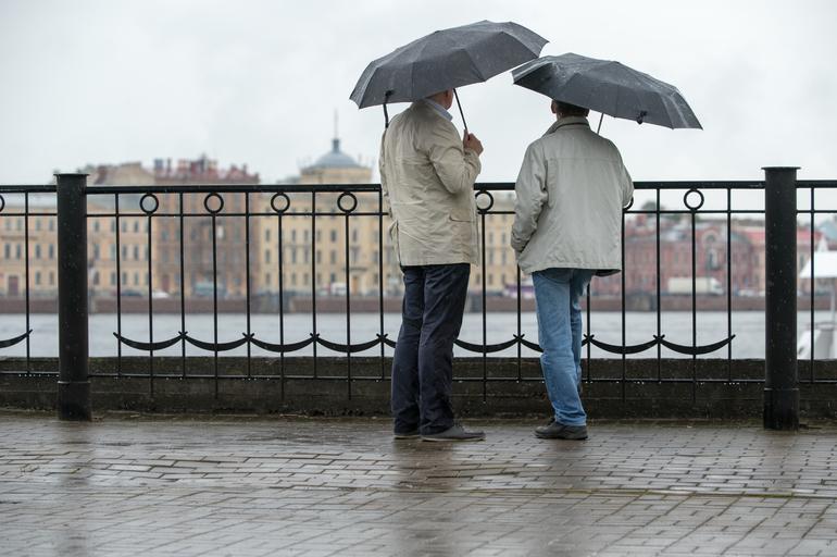 Дожди не покинут Петербург до конца недели
