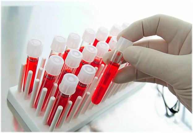 В России провели почти 30 млн тестов на коронавирус
