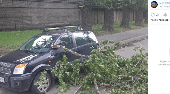 Два человека пострадали при падении деревьев в шторм в Петербурге