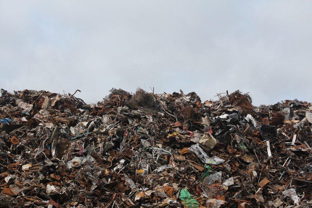 Мусорные полигоны могут исчезнуть из Ленобласти через 3 года
