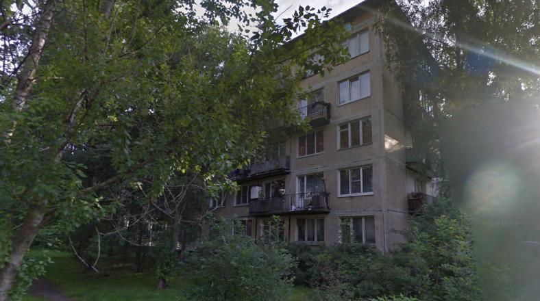 Домушник оставил хозяина квартиры в Купчино без украинских гривен