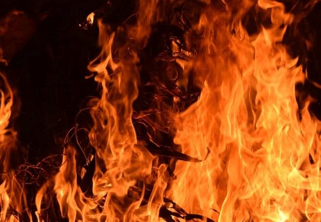В Тосненском районе пожарные час тушили горящий дом