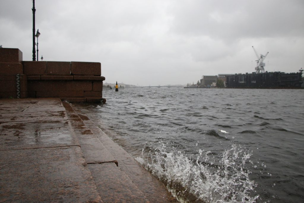 Спасатели предупредили петербуржцев об усилении ветра 15 июня