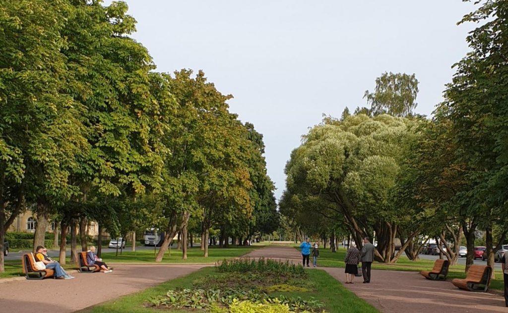 Шторма не будет: в Петербурге снова открылись сады и скверы