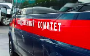 В Ленобласти раскрыли убийство жителя Соснового Бора годичной давности