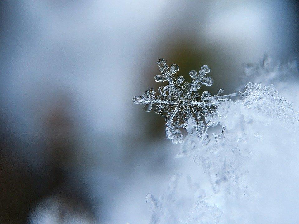 В Ленобласти 8 апреля выпадет снег