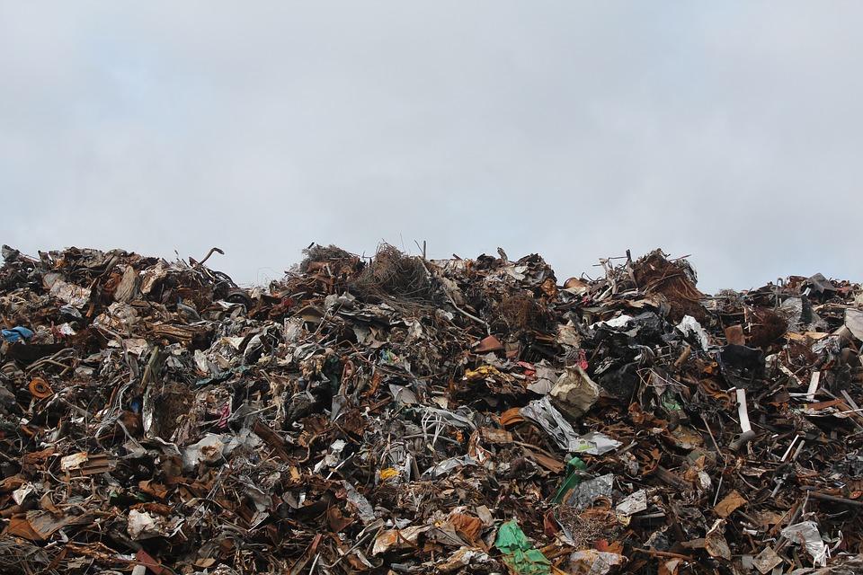 У Петербурга и Ленобласти появился единый оператор для обращения с мусором