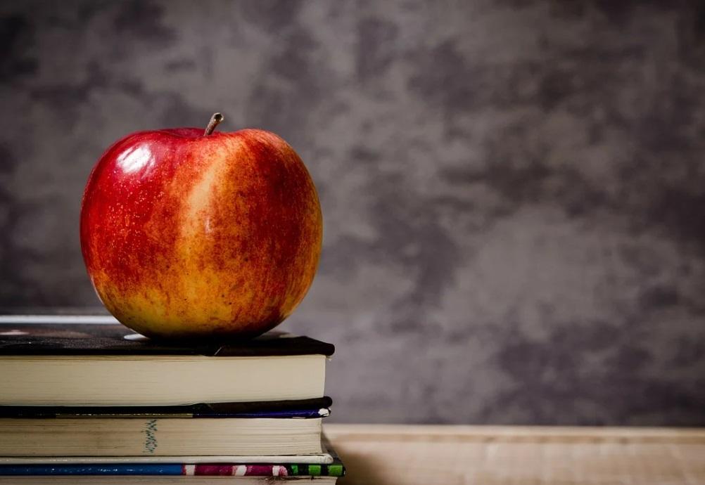 Роспотребнадзор приостановил работу компании, кормившей учеников школы в Кронштадте
