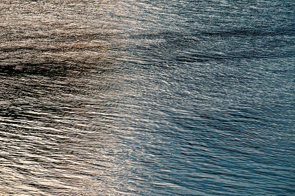 В Ленобласти возбудили уголовное дело после загрязнения акватории бухты «Радуга» Финского залива