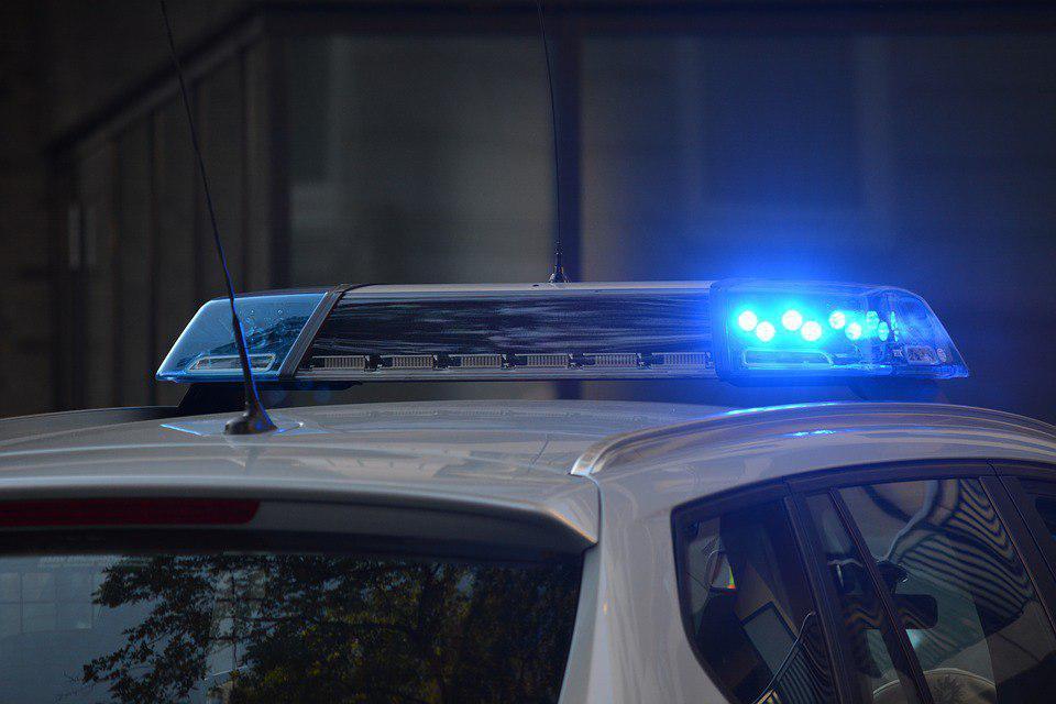 В Гатчине мужчину подозревают в краже дорогого экскаватора