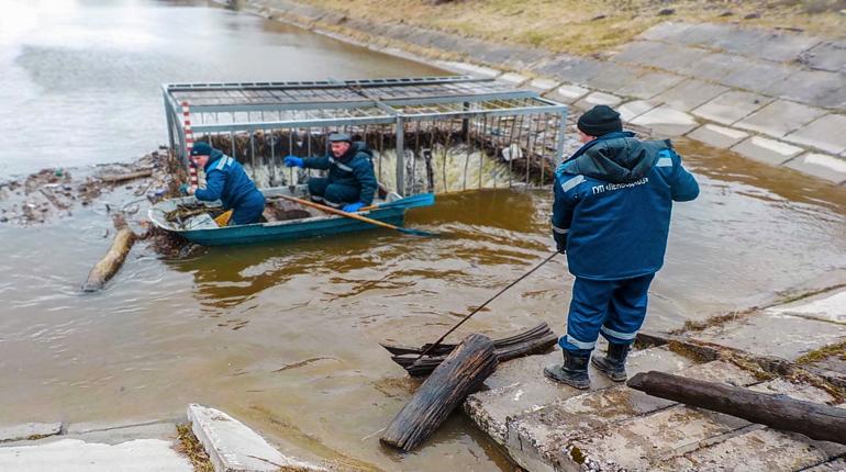 В Петербурге в Московском районе и Стрельне очистили от мусора гидротехнические сооружения