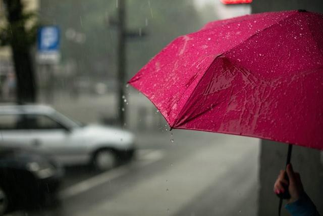 Суббота встретит жителей Ленобласти дождем