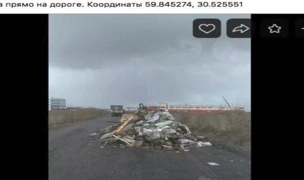 Эко-повестка Петербурга: в Ольгино на деревьях выросла «борода» из влажных салфеток, а горожанам предлагают оценить качество уборки улиц