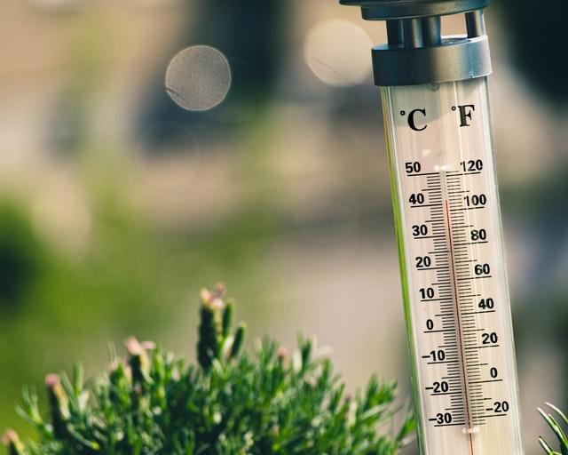 Туман и заморозки: в Ленобласти портится погода