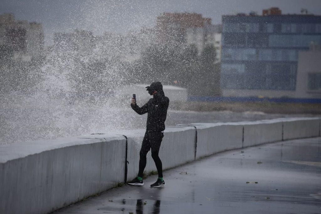 В Петербурге ветер волнует Финский залив и роняет деревья: фоторепортаж Gazeta.SPb
