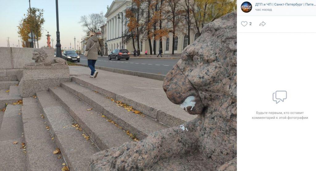 Львам на набережной Макарова почистили зубы после выходки вандалов
